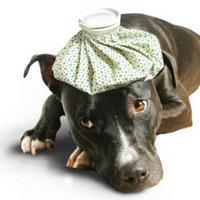 Headache Treatment Las Vegas Nevada at Gerber Chiropractic