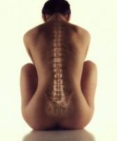 Spinal Health las Vegas, Henderson Chiropractor, Las Vegas Chiropractor, Gerber Chiropractic 702-878-0056 or 702-658-1420, Summerlin Chiropractor
