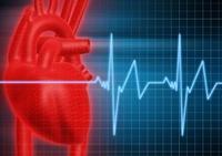 Heart health in Las Vegas, Henderson Chiropractor, Las Vegas Chiropractor, Gerber Chiropractic 702-878-0056 or 702-658-1420, Summerlin Chiropractor