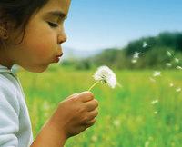 Allergies Asthma and Chiropractic, Chiropractic News, Henderson Chiropractor, Las Vegas Chiropractor, Gerber Chiropractic 702-878-0056 or 702-658-1420, Summerlin Chiropractor, Chiropractor 89146