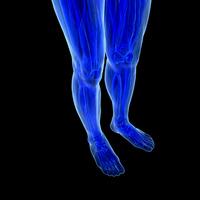 Restless Legs Syndrome, Las Vegas Chiropractor, Summerlin Chiropractor, Henderson Chiropractor, Gerber Chiropractic 702-878-0056 or 702-658-1420  Chiropractor 89146